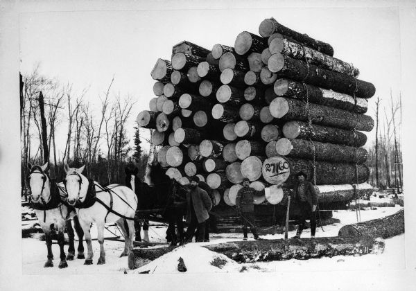 A sled loaded with lumber being pulled by four horses in the snow.  Three men are posed for the portrait as well.