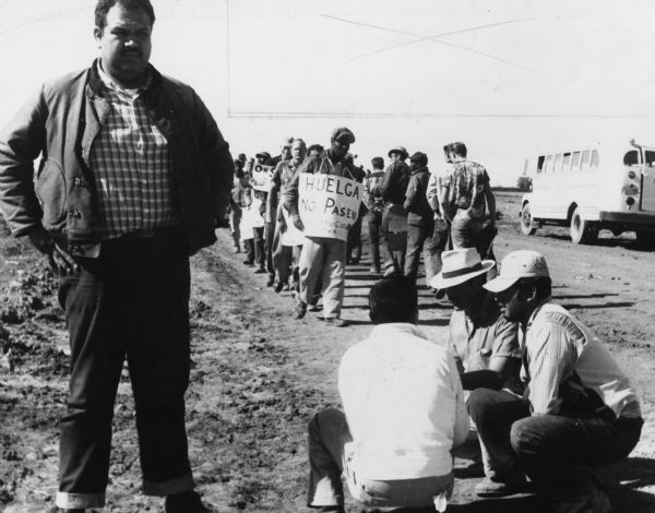 United Packinghouse Workers of America (UPWA) field representative John Soria watching picket line and police activities during the important Imperial Valley Lettuce Strike.