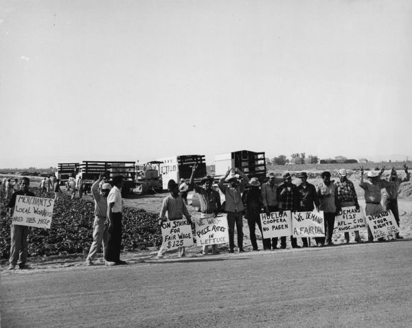 The farm workers picket line near El Centro during the important Imperial Valley lettuce strike.