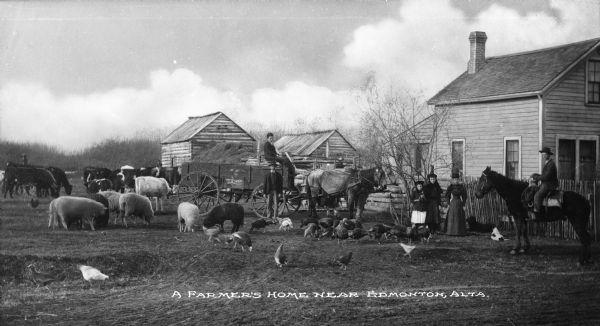 Farmhouse Animals And Family