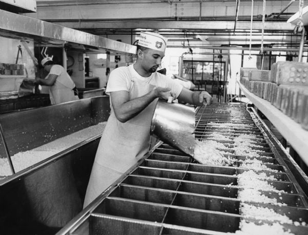 Workers are busy filling the stainless steel Brick Cheese forms with curds.