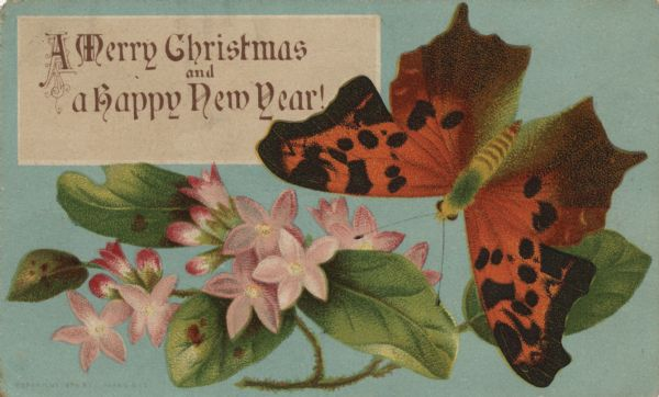 "Holiday card with flowers and butterflies. Caption reads: ""A Merry Christmas and a Happy New Year."" Chromolithograph."