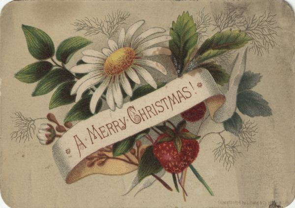 "Holiday card with ribbons, flowers and fruit. On the ribbon are the words: ""A Merry Christmas!"" Chromolithograph."
