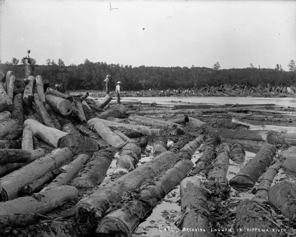 Three barefoot boys stand on a pile of logs in the foreground looking across the river at a group of men working to free a log jam in the Big Eddy on the Chippewa River.