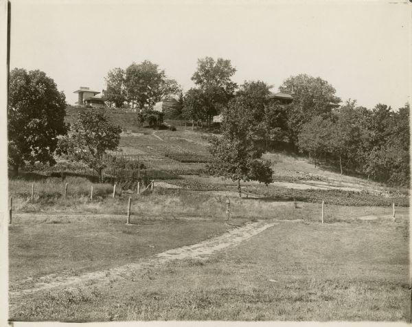Pasture, vegetable gardens, and trees on the southeast side of Taliesin I.