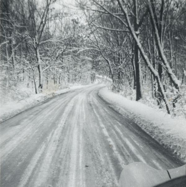 A winter scene down a road in the snow-covered arboretum.