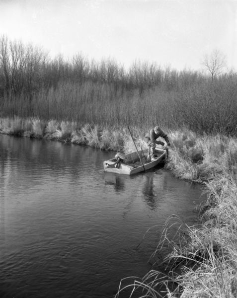 A hunter, sporting cold weather attire and thigh-high rubber boots, pulls a mink in a trap off the shoreline and on to his small, motorized, fishing boat. Tall grasses and trees line the shore.