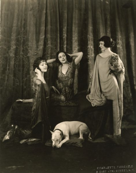Studio portrait of the Talmadge sisters, Constance, Norma, and Natalie, posed with an American Staffordshire bull terrier and a Pomeranian. Constance and Norma are wearing Batik summer lounging robes.