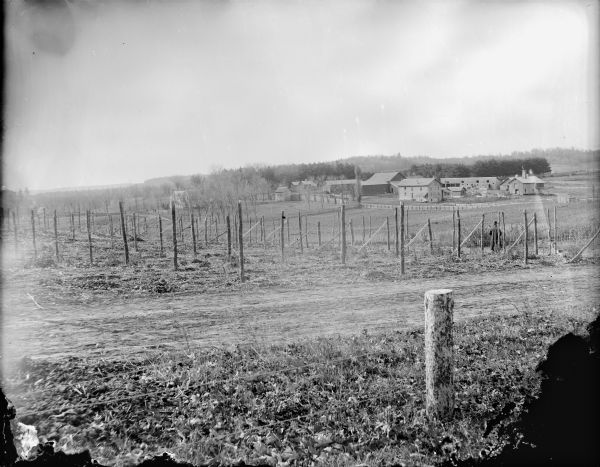 View over fences, fields and road towards several wooden buildings. A man is standing overlooking the fields with his back towards the camera.