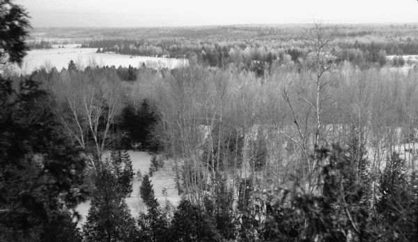 Elevated view of a Door County landscape in winter with snow on the ground, taken from the Hotz Fish Creek cottage. Birch trees and conifers are in the foreground; frozen Fish Creek Harbor in the background.