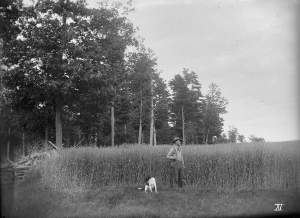 Man and dog standing in a field of spring wheat on the farm of Ferdinand Ledke. Another man is standing in the background, facing the forest.