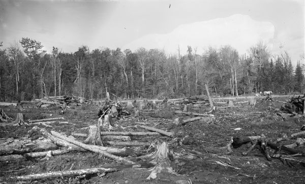 Partially cleared stump land on the farm of Gustave Voight, two miles south of Merrill, Lincoln county. Logs for burning are in the foreground. In the far background on the right is someone standing with a horse.