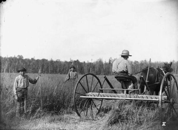 Three men haying in a field. Two men with hand rakes pose, while the third man, sitting on a horse-drawn rake, faces away from the camera.