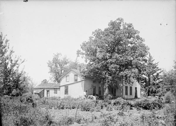 Exterior view of the Turvill house and garden. A man and woman are working in the garden near the Turvill home. The woman, wearing a bonnet, is bent over working, while the man stands next to her with a gardening tool in his hand. The garden is in the foreground, with trees surrounding the house.