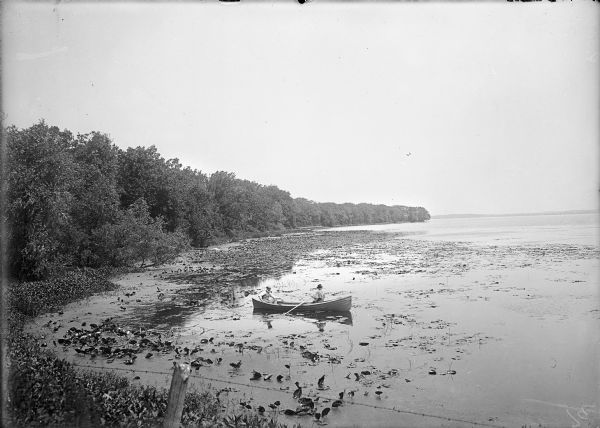 Slightly elevated view of the west shore of Turville Bay. Two men sit in a rowboat near the shore surrounded by water lilies. There is a fence in the foreground, and trees are along the shoreline on the left. In the far background is the shoreline across the lake.