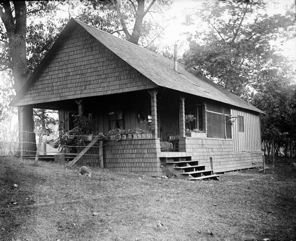 Three-quarter view of the Thwaites cottage on Lakeside. On the left a young woman is sitting in a hammock on the porch behind a fence. In the yard in the foreground, there appears to be a dog lying in the grass. The roof of another building is in the far background.