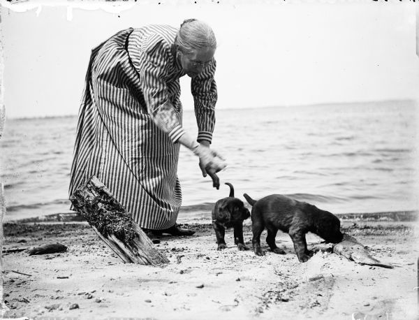 Elizabeth Turvill Wood on the beach with two puppies, who are investigating a dead fish. The lake is in the background.