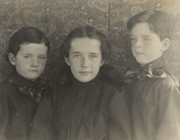 The children of Frank B. and Louise Mears Fargo posing in front of a folding screen for a quarter-length portrait. They are, from left, Frank Jr., age five years; Dorothy, age 11; and Stuart, eight. The boys are wearing large bow ties; Dorothy is wearing a large bow in her hair.