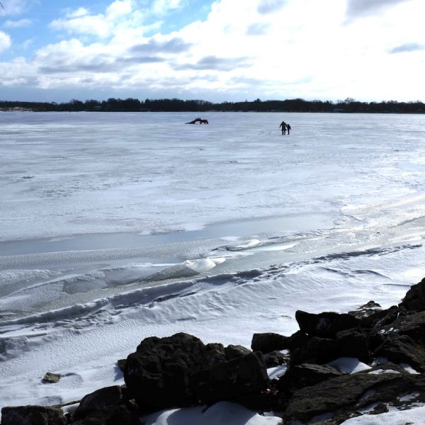 Encounter On Lake Mendota >> Searching For The Red Dragon On Lake Monona Photograph Wisconsin