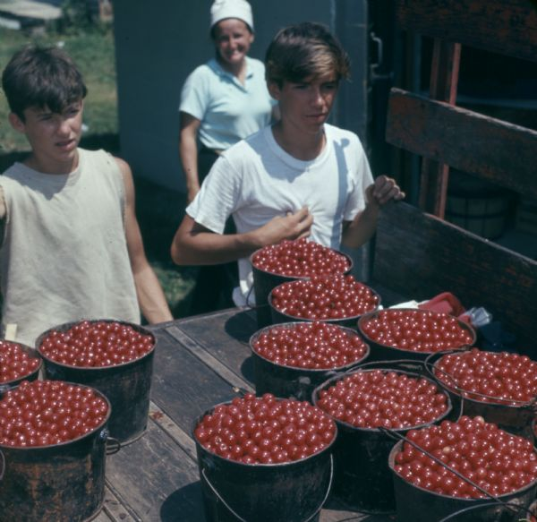 Two boys standing behind a wagon or truck bed loaded with buckets full of cherries. A woman wearing a hat is standing by a building in the background.