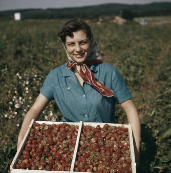 A woman posing outdoor holding a box of strawberries in a field. She is wearing a kerchief to cover her hair.