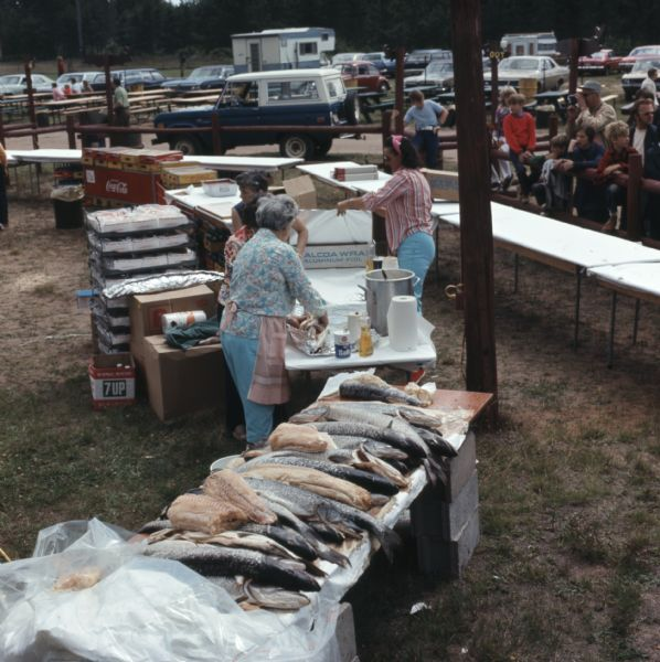 Elevated view of four women setting up tables at the Musky Jamboree, preparing to cook and serve over one thousand pounds of musky. Men and boys are watching the women work from behind a wood fence.