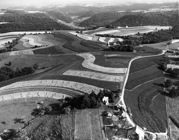 Aerial view of contour strip farming with the Obert Olstad farm in foreground. The Carl Backum farm is in the background.