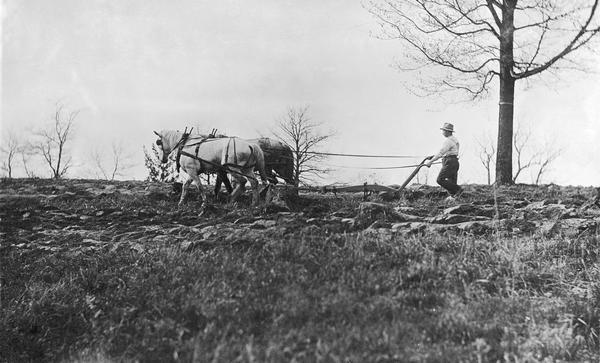 Farmer plowing a field with two horses.