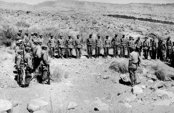 Soldiers lined up in the Algerian desert.