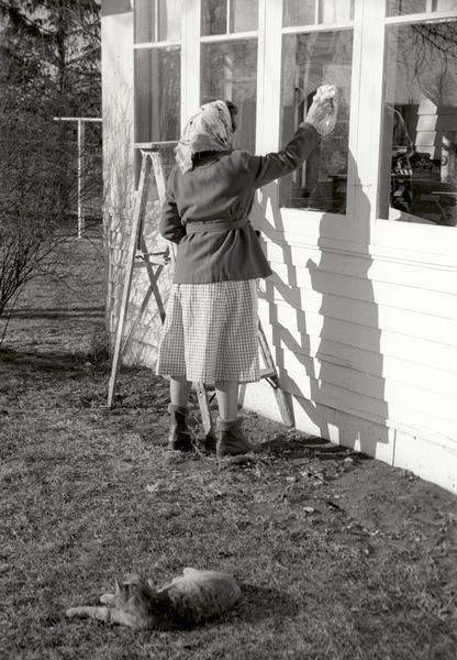 Edna Kern washing the windows outside her house. A cat lies on the lawn in the foreground.