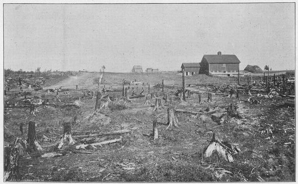 View of the A.G. Beebe farm in Bruce, Wis. with stump land in the foreground. In the background is Mr. Beebe's barn and house.