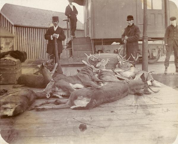 Four men pose with guns and dead deer on a railroad platform.