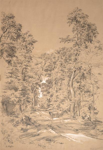 Pencil drawing of a dirt road through the woods with added white highlights.  A horse-drawn wagon with two passengers moves down the road in the distance, dwarfed by the surrounding deciduous trees.