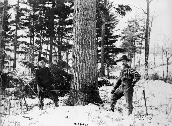 Two lumberjacks pose at the base of a tree with a double-handled saw poised to cut.