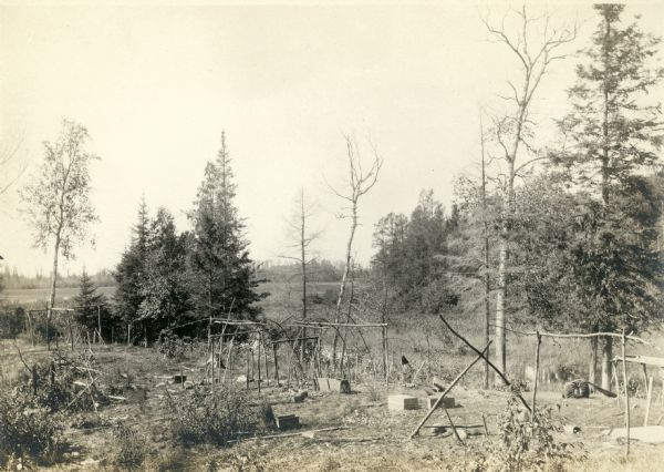 Vilas County, Ricing camp, Rice Creek. Lac Du Flambeau area.