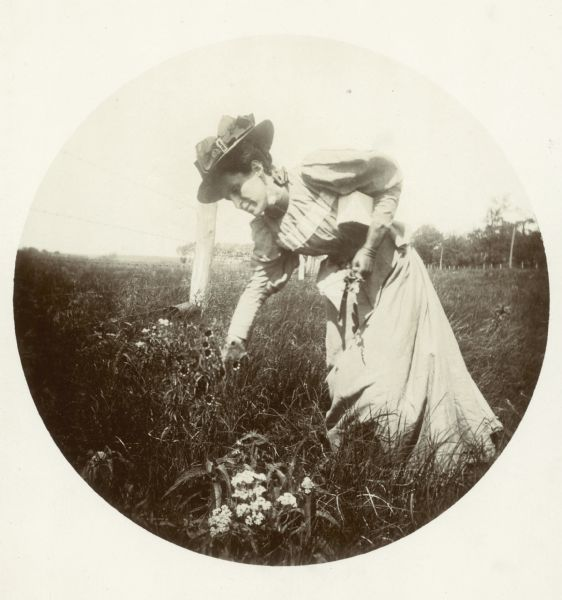 Jessie Turville Thwaites, wife of Reuben Gold Thwaites, picks wildflowers.