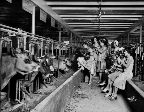 The Ingenues, an all-girl band and vaudeville act, serenading the cows in the University of Wisconsin-Madison Dairy Barn in a scientific test of whether the cows would give more milk to the soothing strains of music. The tallest woman, second from left, is Dorothy Donohoe. Standing behind her is her sister Juel Donohoe, who is mostly obscured by the trombone player.