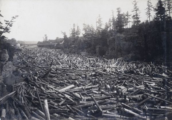 Several men standing amidst a huge log jam on the St. Croix River. The men are standing in a line holding a rope. A bridge spans the river in the far background.