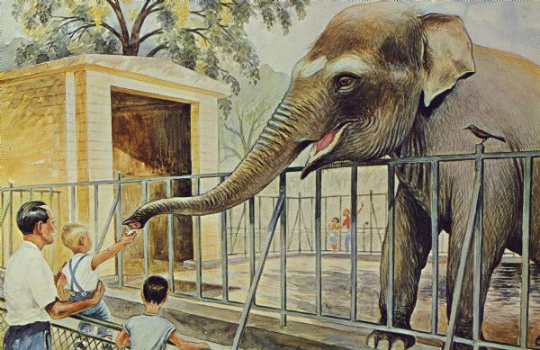 A watercolor painting by Jens von Silver presented to the zoo by the Rennebohm Drug Stores. The painting shows a child reaching up to feed an elephant at the Henry Vilas Zoo (Vilas Park Zoo). One of a series of 15 zoo paintings.
