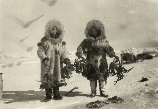 Wenga and Amutuk catching crabs in the Arctic.
