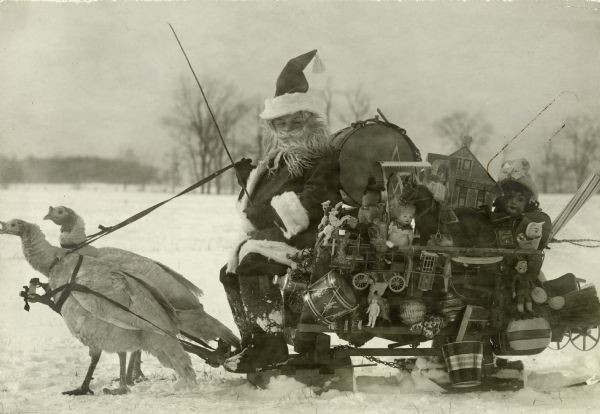 Santa Claus is sitting on his sleigh, which is being pulled by two turkeys in harness in a snow-covered field with trees and hills in the background. Santa is wearing his traditional fur-trimmed suit. The sleigh is crammed with toys, dolls and musical instruments.