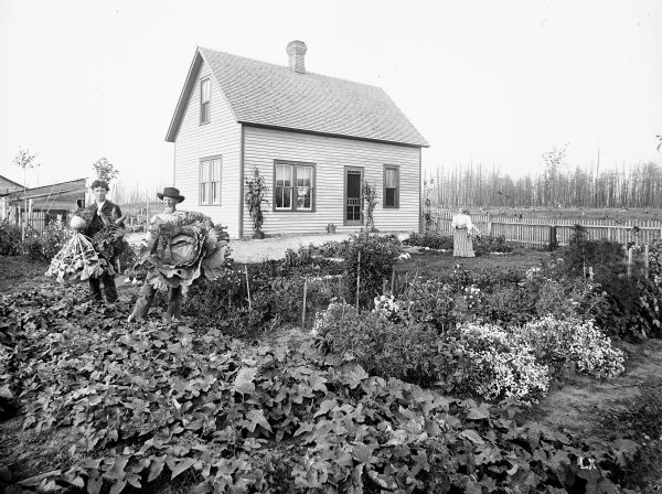 Julius Koehler family in their garden in front of their newly built frame home. The original Koehler farm was destroyed by forest fire in July of 1894, evidence of which is left in the burnt trees in the background.