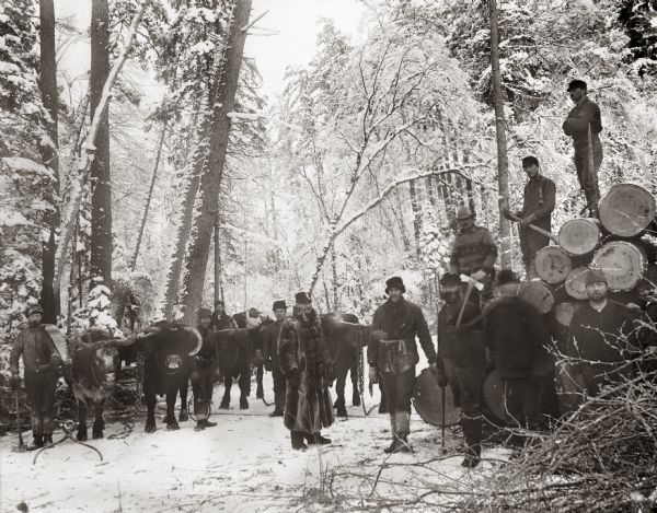 A Knapp, Stout & Company crew with J. Bracklin (in fur coat), logging superintendent.