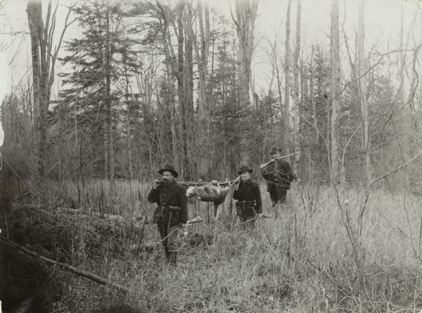 Three deer hunters are walking through the woods, holding their rifles. Two of the men are also carrying a killed deer hung from a pole resting on their shoulders.